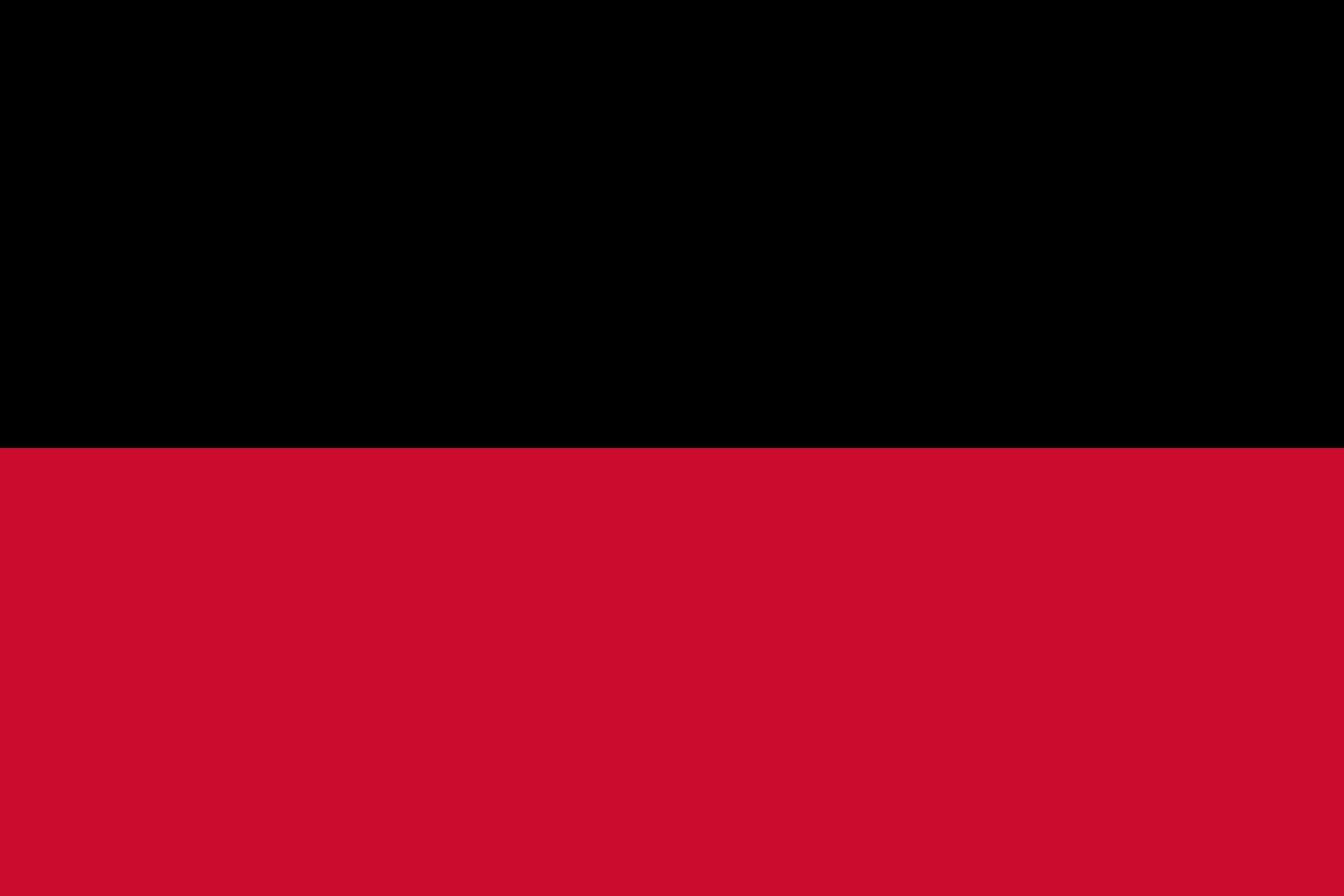 Flag_of_Nijmegen