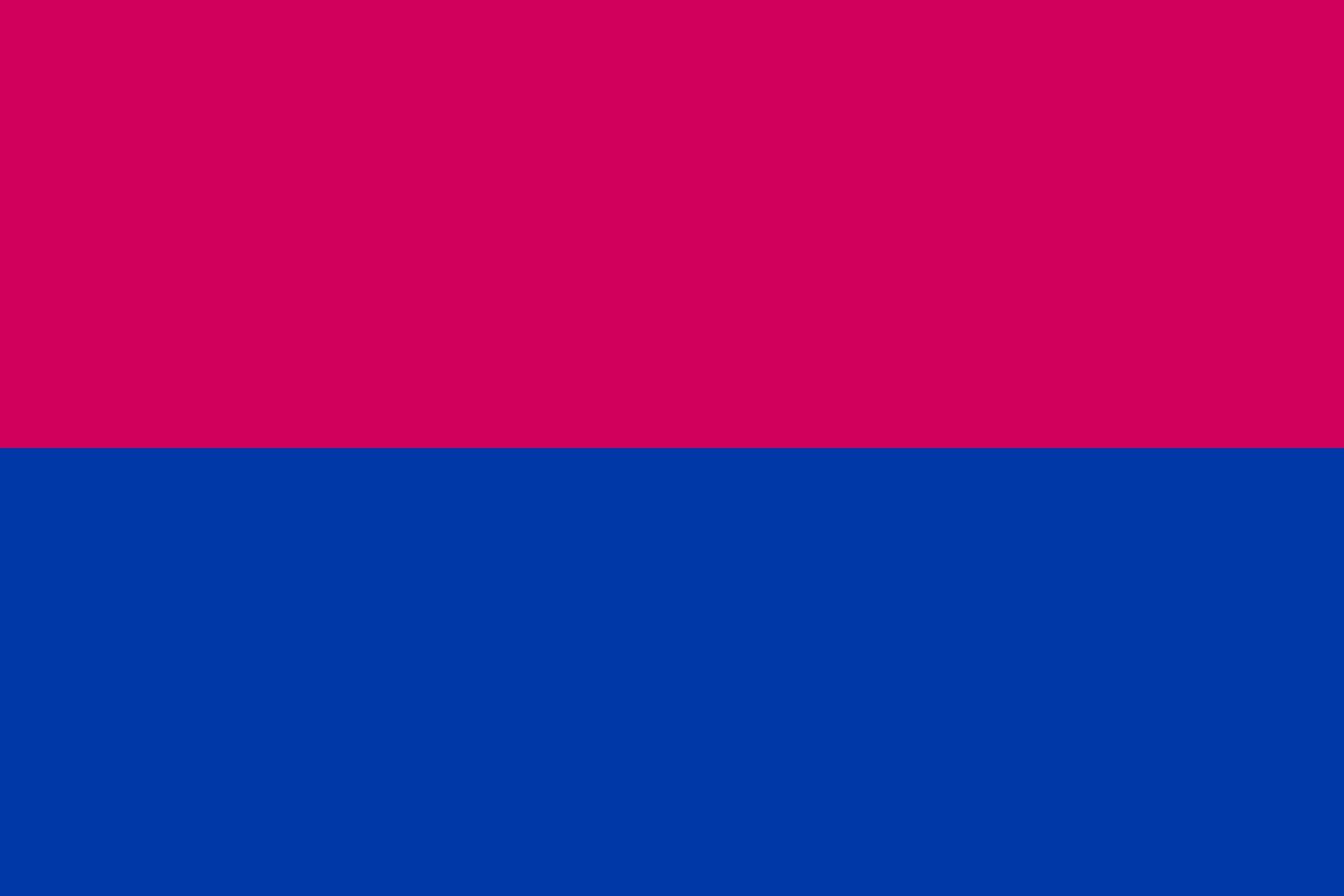 Flag_of_Venlo__Netherlands__1945-2010___de_jure