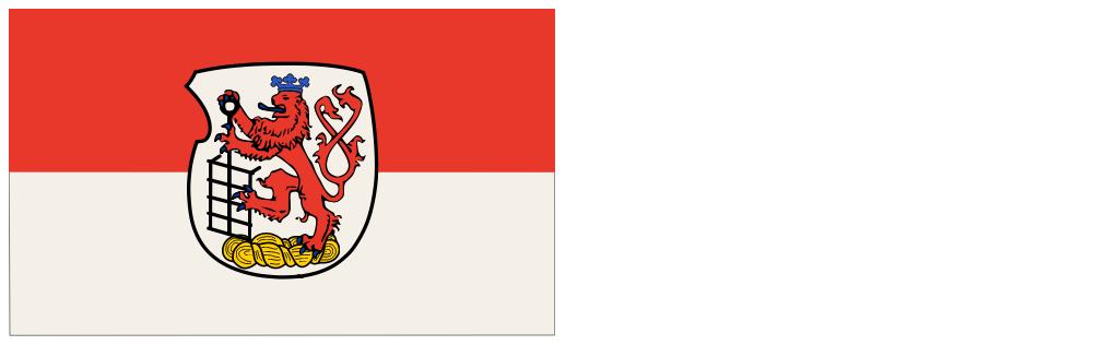 Flagge_Wuppertal