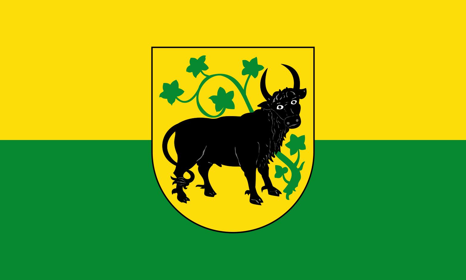Flagge_der_Stadt_Güstrow