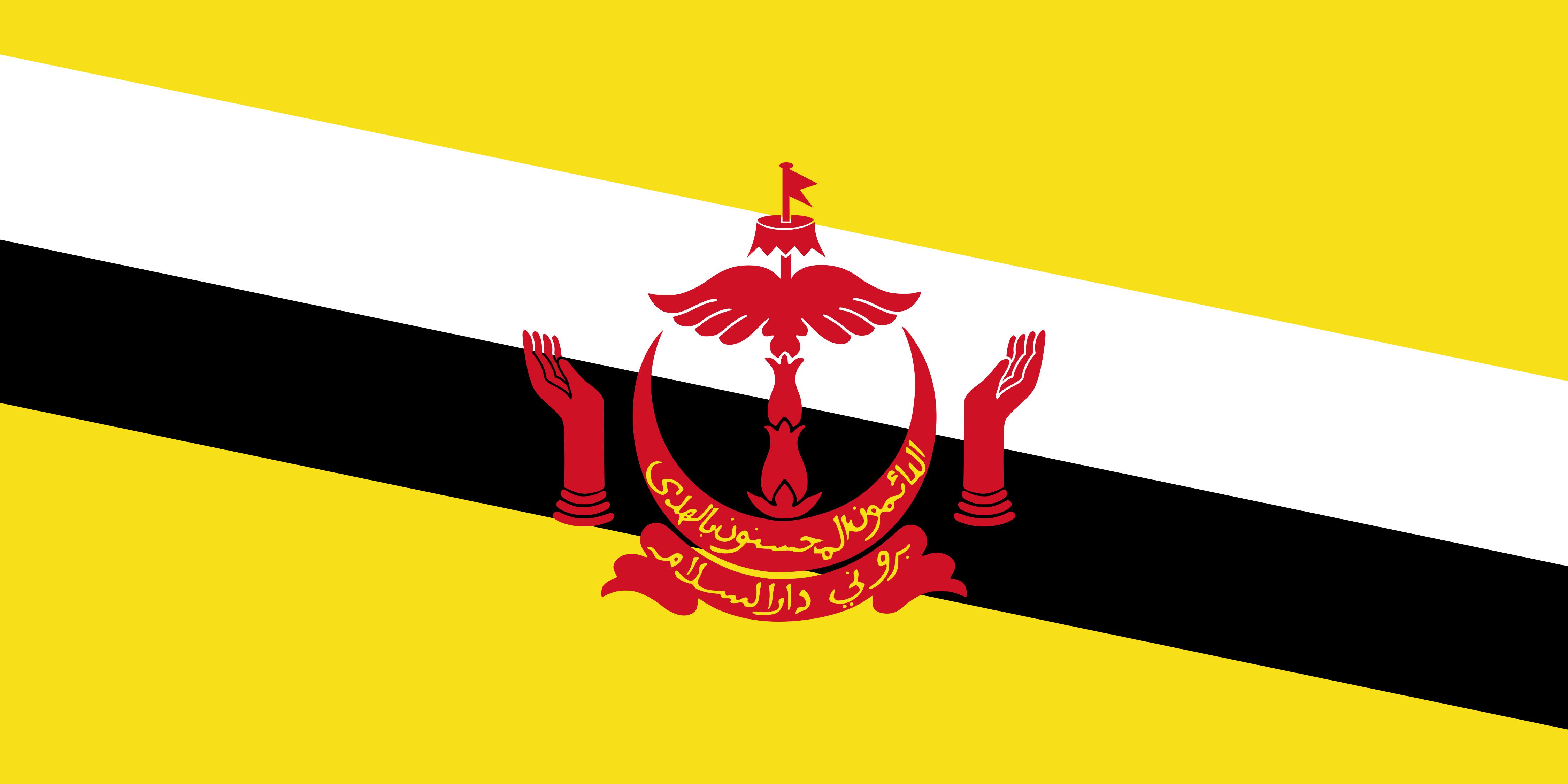 Brunei Flag Colours