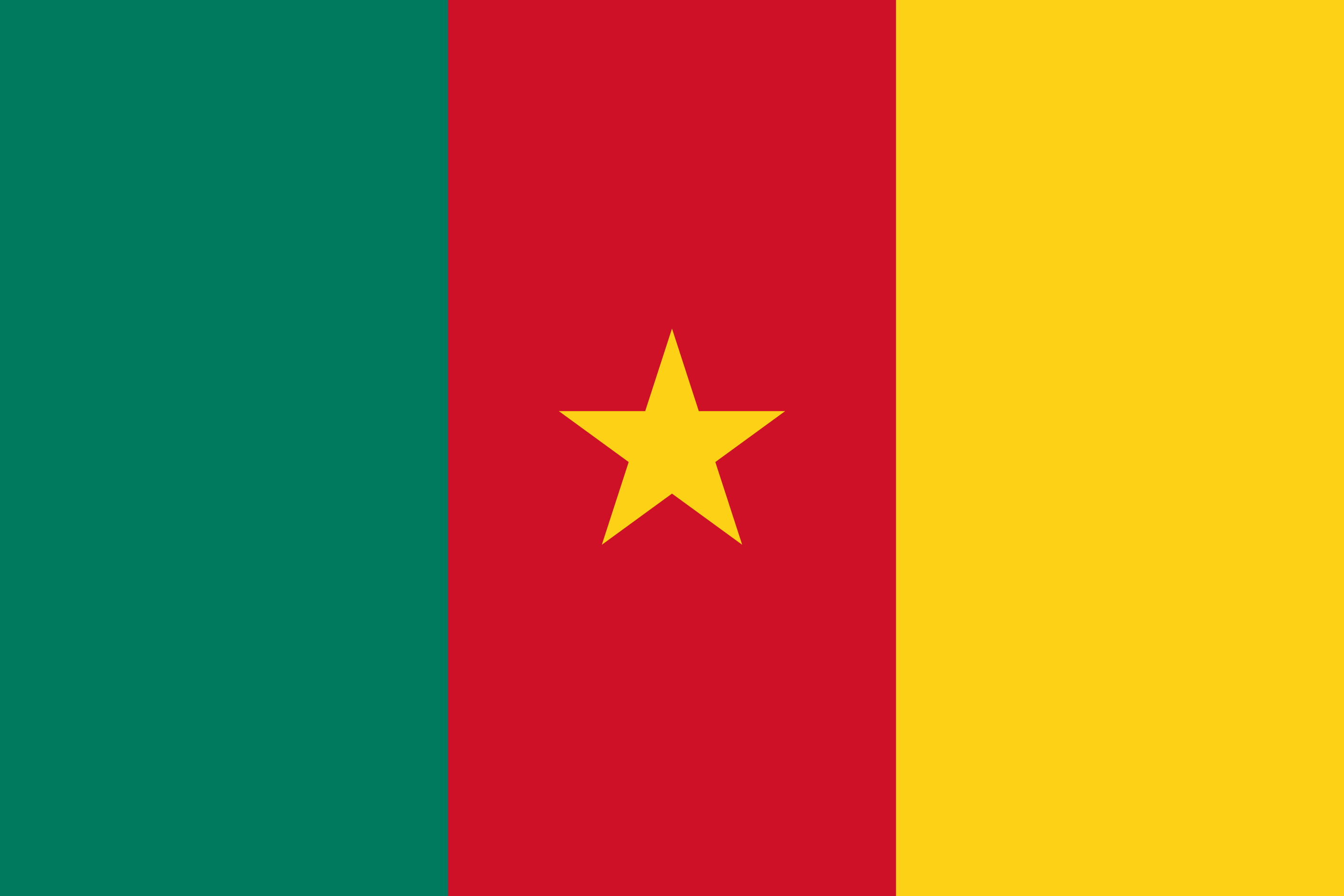 Cameroon Flag Colours
