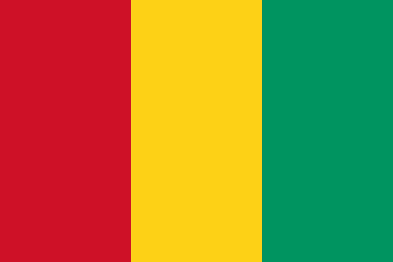 Guinea Flag Colours