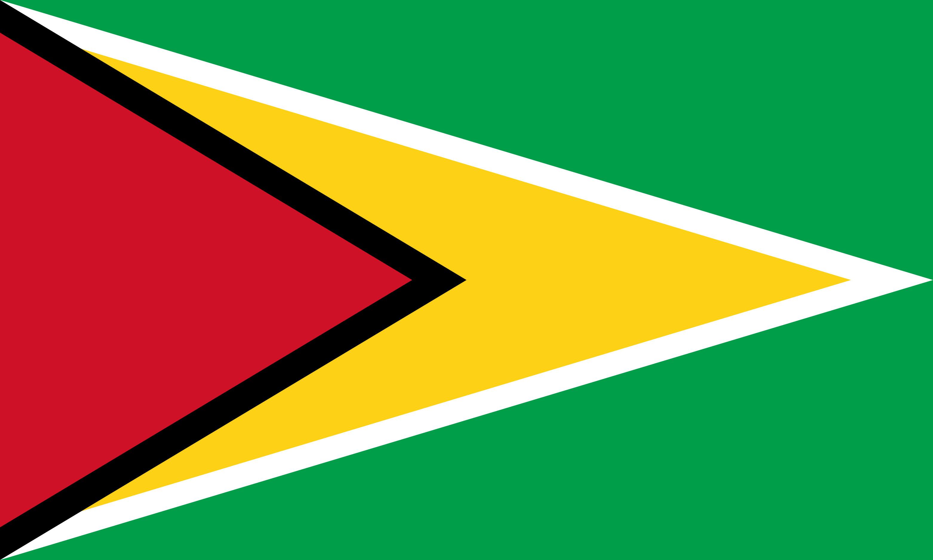 Guyana Flag Colours