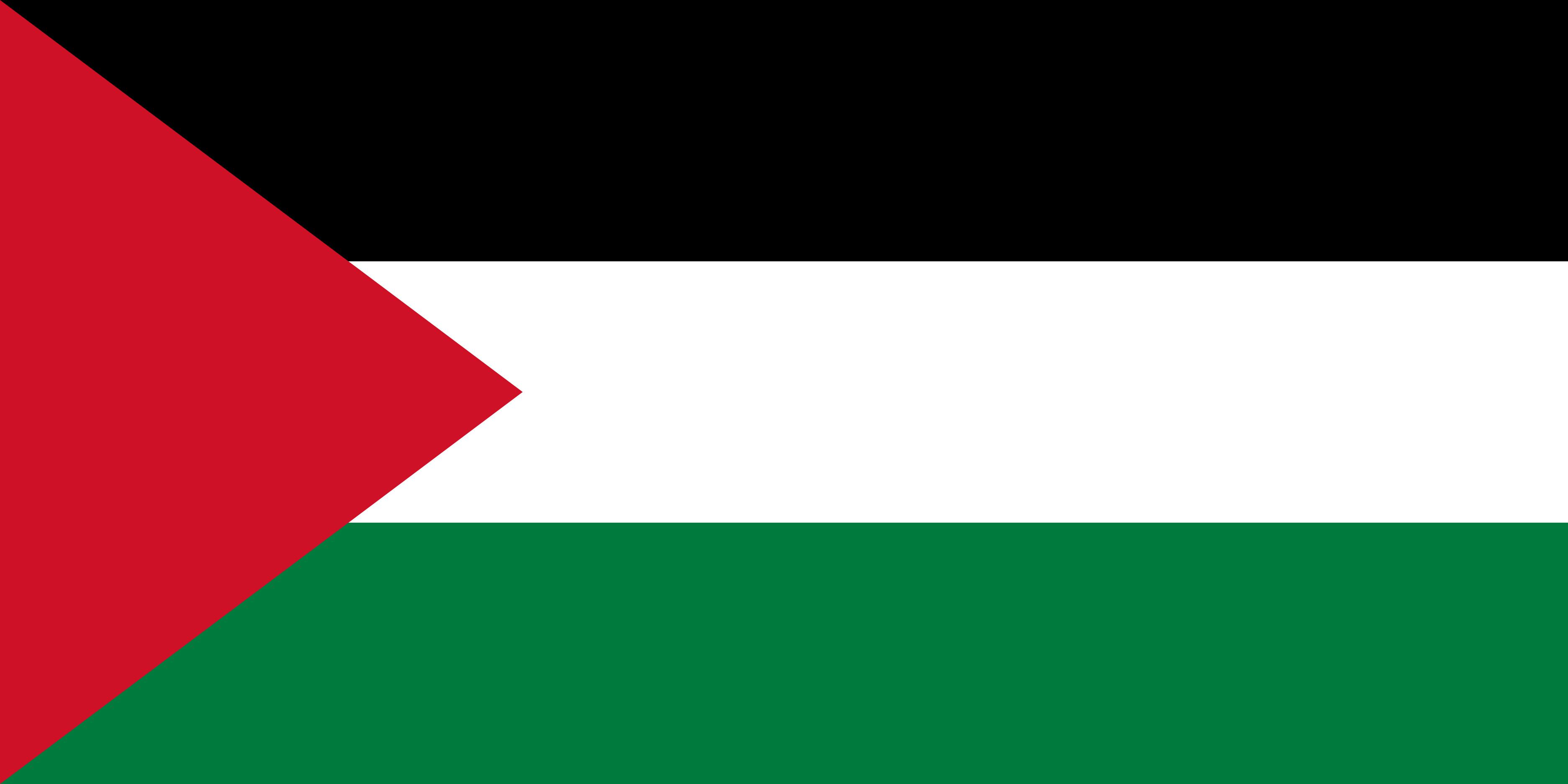 Palestine Flag Colours