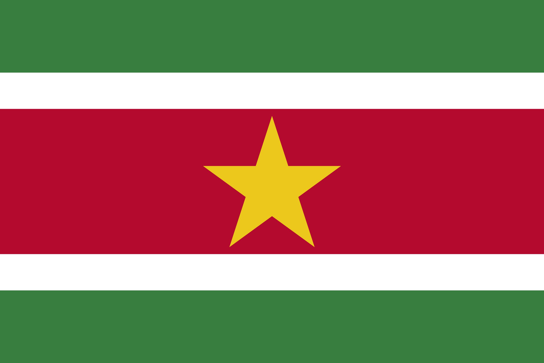 Suriname Flag Colours