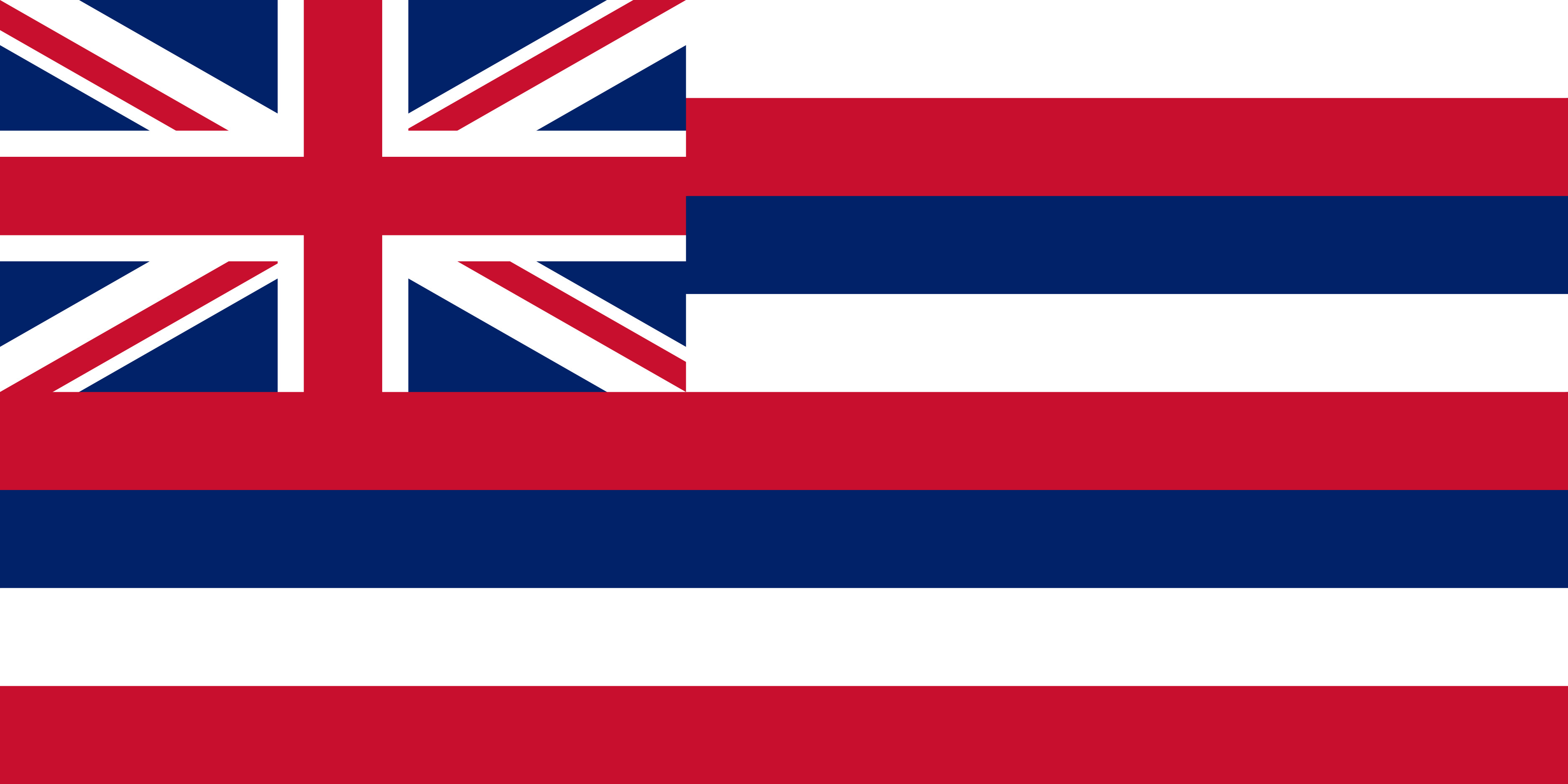 Hawaii State Flag Colors