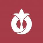 Flag of Aichi Prefecture