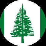 Norfolk Island Flag Emoji 🇳🇫