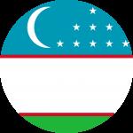 Uzbekistan Flag Emoji 🇺🇿
